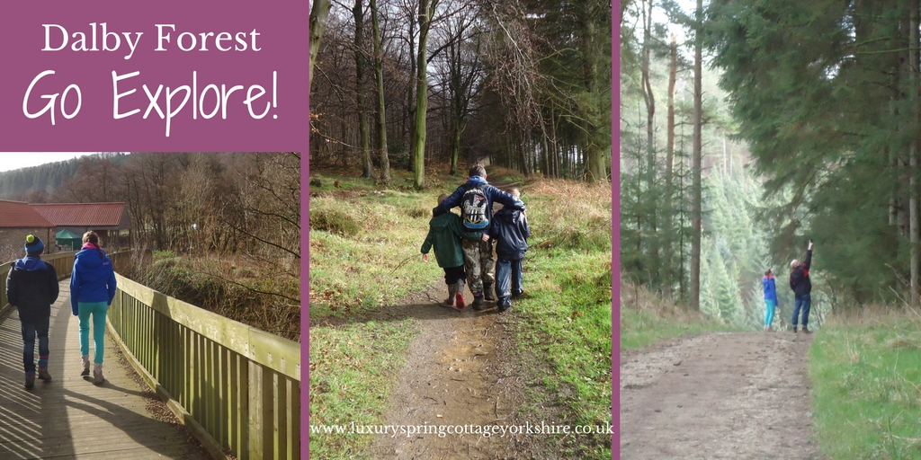Dalby Forest, North Yorkshire – Go Explore!