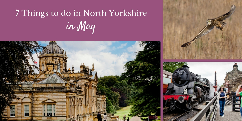 7 Things to do in Yorkshire in May